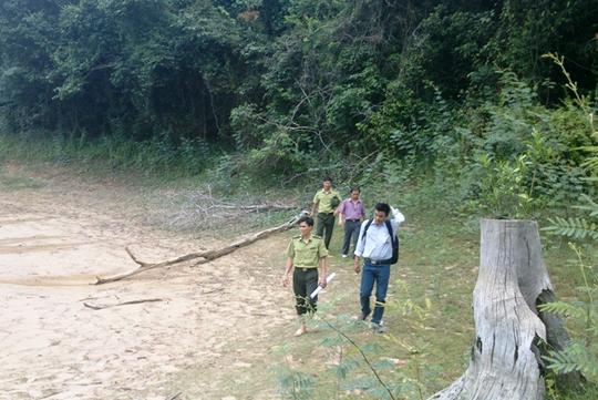 Cán bộ kiểm lâm Vườn Quốc gia Bến En trong một lần đi kiểm tra rừng