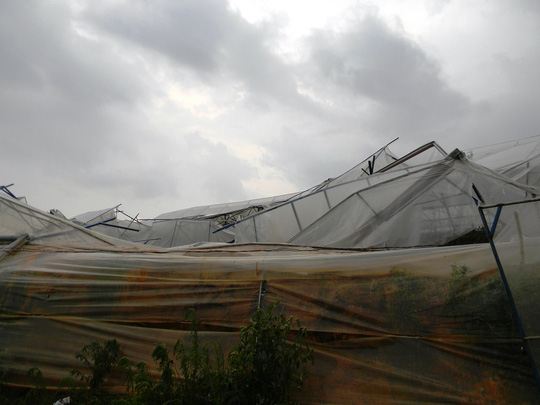 Hậu quả của trận mưa đá kèm lốc xoáy để lại khá nặng nề