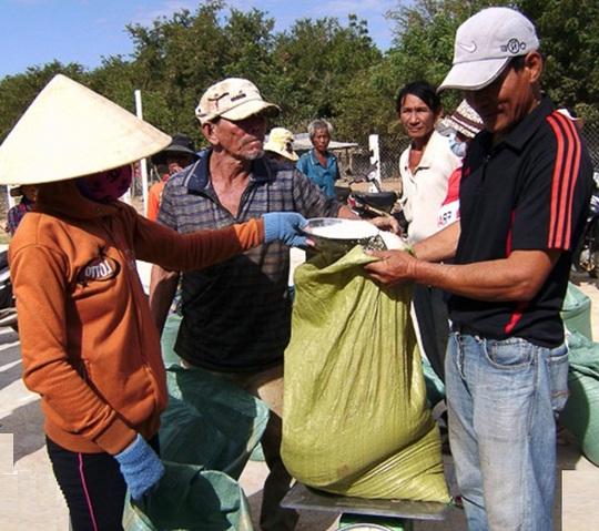 Sai sót làm mất ý nghĩa nhân đạo của việc cấp phát gạo cứu trợ