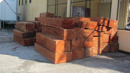 Số gỗ tang vật đang được giữ tại công an huyện Hàm Tân.