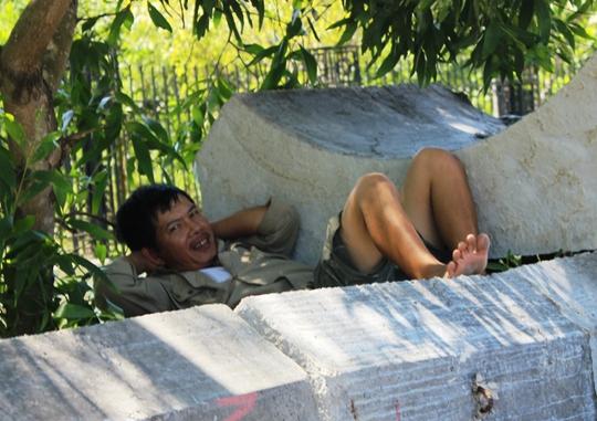 Leo lên các trụ bê tông có bóng cây ngã lưng