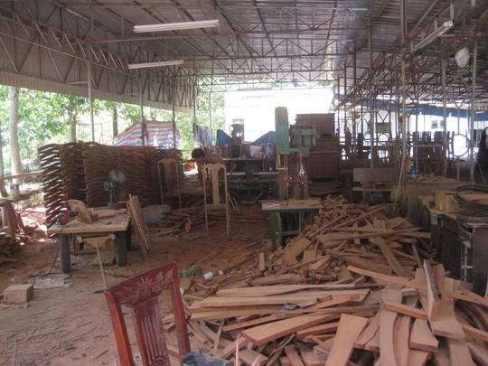 Nửa còn lại, một sở chế biến gỗ đã tiếp quản