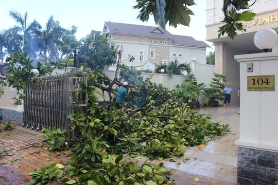 Mưa lớn, gió lốc bất thường ở quận 9