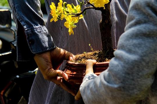 Chỉ còn vài tiếng đồng hồ nữa là thời khắc giao thừa sẽ đến, chợ hoa cũng sắp nghỉ. Mua hoa giảm giá về chưng Tết cũng là một cách để người dân đón cái Tết ấm áp hơn.