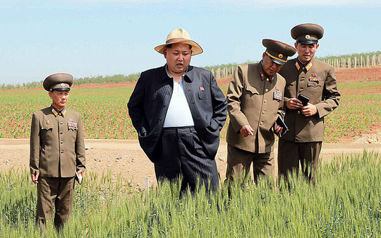 North Korean leader Kim Jong-un looks at some wheat during a visit to a seed research farm operated by the North Korean Peoples Army.