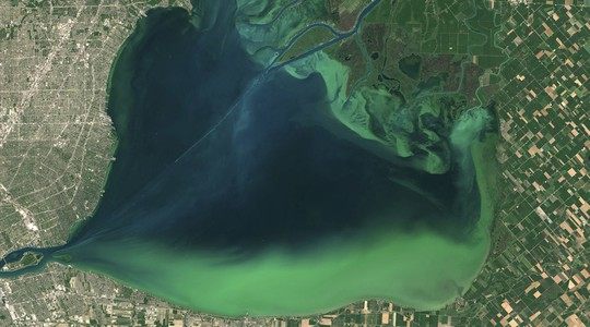 Algal blooms visible as swirls of green are seen in Lake St. Clair, on the border of Michigan and Ontario, Canada, in a NASA Landsat 8 satellite image taken July 28, 2015. Picture taken July 28, 2015. © NASA