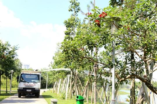 Xe tưới nước cây ở TP Mới hoạt động liên tục trong những ngày nắng