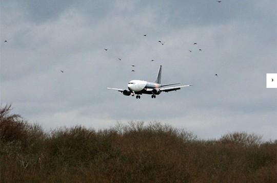 nguồn tin hàng không Nga cho biết một động cơ trên chiếc Boeing 737 bị hư hại. Ảnh: Independent