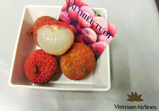 Quả vải tươi được phục vụ trên suất ăn của Vietnam Airlines