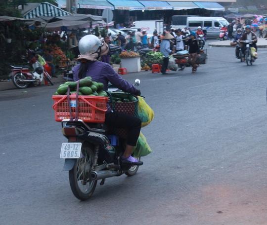 Các tiểu thương mang bơ ra chợ Đà Lạt bán lẻ