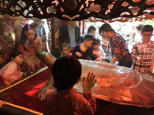 Tiêu bản rùa Hồ Gươm khổng lồ khiến trẻ em rất thích thú