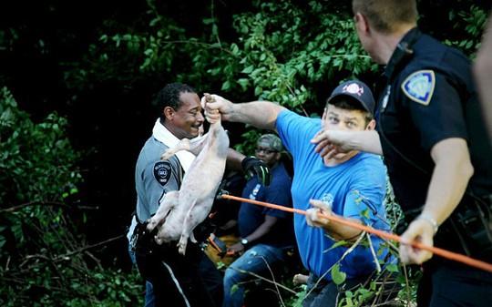 Nhiều người tình nguyện đến giúp đỡ. Ảnh: The Dayton Daily News