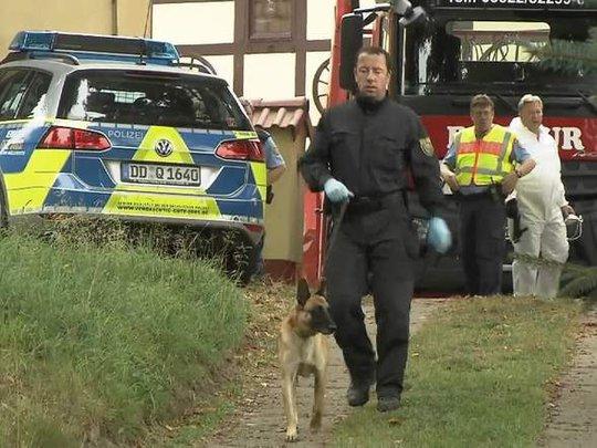Chó nghiệp vụ tìm kiếm nạn nhân. Ảnh: Sky News