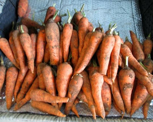 Tiểu thương TP HCM cho biết giá rau củ tăng vọt là do thời tiết.