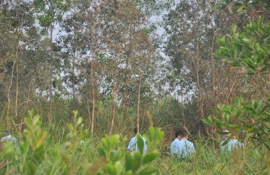Nhiều cây cối xung quanh vị trí trực thăng bị cháy xem do ảnh hưởng từ vụ nổ