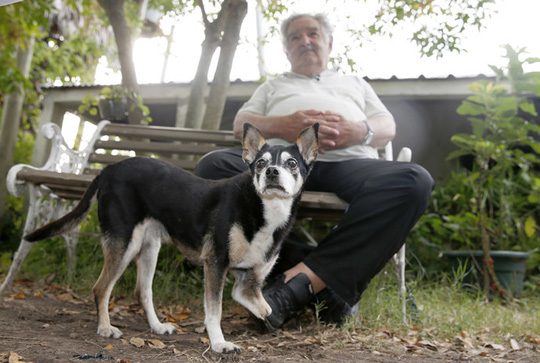 ...cùng với chú chó 3 chân Manuela. Ảnh: Reuters