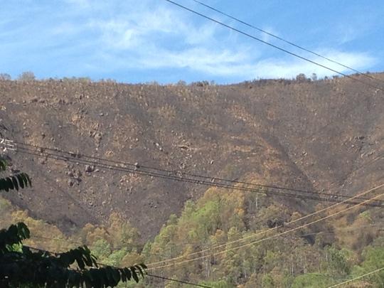 Núi Bà Hỏa thành đồi trọc sau vụ cháy rừng