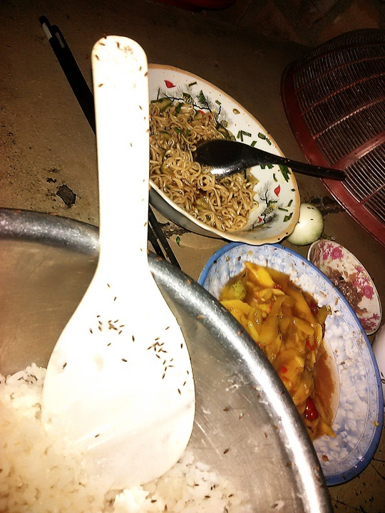 Ruồi mắt đỏ bu dày đặc trên thức ăn của người dân thôn Đông Bình, xã Nhơn Thọ, thị xã An Nhơn