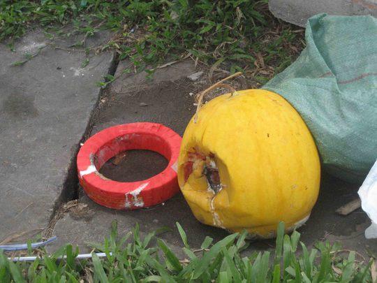 Một trái dưa hấu vàng khoảng 12 kg và đế lót dưa bị vứt trên dải phân cách trước cổng Bệnh viện Đa khoa TP Cần Thơ