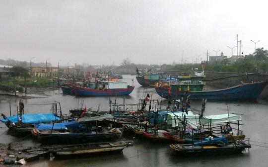 Tàu thuyền neo đậu tránh bão ở Đồ Sơn (Hải Phòng) - Ảnh: Trọng Đức