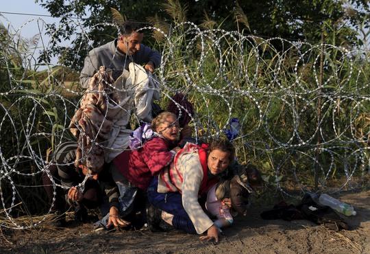 Người di cư Syria ở Serbia vượt qua hàng rào dây thép gai để vào Hungary hôm 27-8Ảnh: Reuters