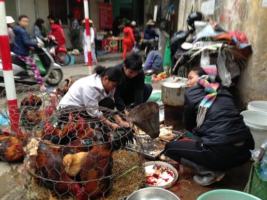 Mua bán, giết mổ gà - vịt không rõ nguồn gốc dễ làm tăng nguy cơ nhiễm virus cúm gia cầm