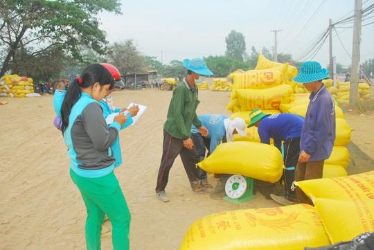 Đợt thu mua tạm trữ lúa gạo lần này đã giúp giá lúa ở ĐBSCL ổn địnhẢnh: Thốt Nốt
