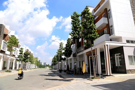 Nhiều tuyến phố sẽ rất đẹp trong những năm tới khi cây cối đồng loạt cho bóng mát