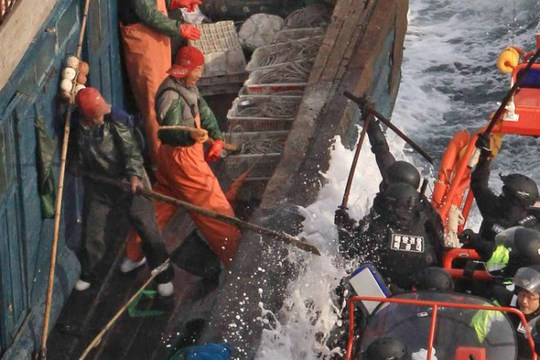 Ngư dân Trung Quốc chống trả cảnh sát biển Hàn Quốc khi bị vây bắt. Ảnh: KOREA BANG