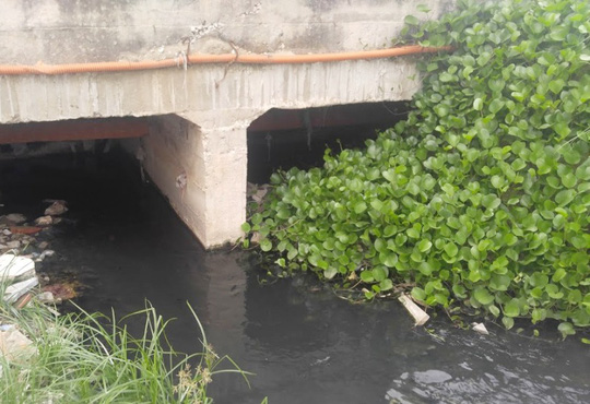 Cống nước đen kịt, bốc mùi hôi thối trên đường Hồ Xuân Hương đổ thẳng ra biển