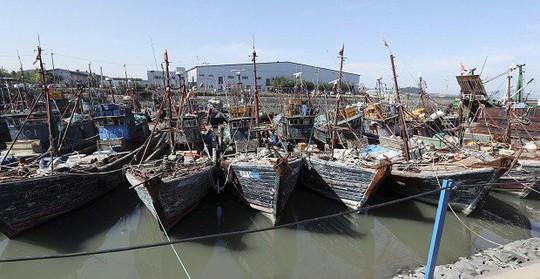 Tàu cá Trung Quốc đánh bắt trái phép trong vùng biển Hàn Quốc đang bị tạm giữ ở cảng thuộc TP Incheon hôm 10-10. Ảnh: AP