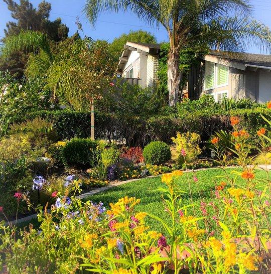 Ngôi nhà nhỏ yên bình giữa một khu vườn đẹp