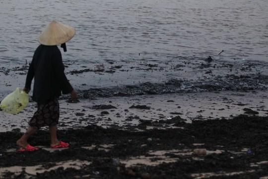 Tại bãi biển Nhật Lệ nước biển chuyển màu đen loang lổ vì cành cây, rác thải từ nhiều nơi tấp vào