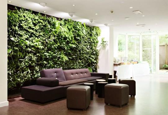 Phòng khách nhà bạn sẽ trở nên đặc biệt hơn nhiều với bức tường độc đáo này.