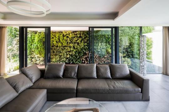 Bức tường xanh này cũng giúp không gian trong nhà mát mẻ hơn.