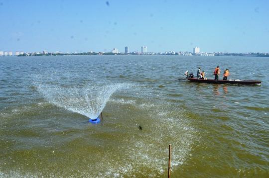 Lực lượng chức năng dùng sục nước để tạo ô xy cứu vãn số cá còn lại