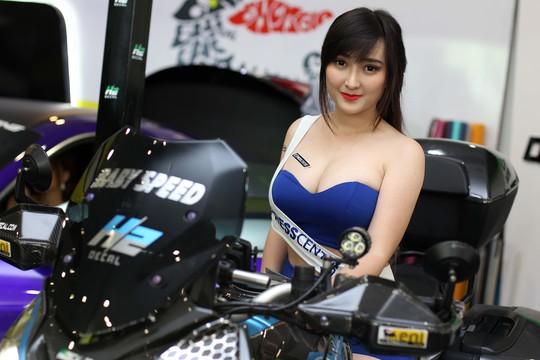 Người đẹp của các hãng mô tô phân khối lớn cũng không kém phần rạng rỡ