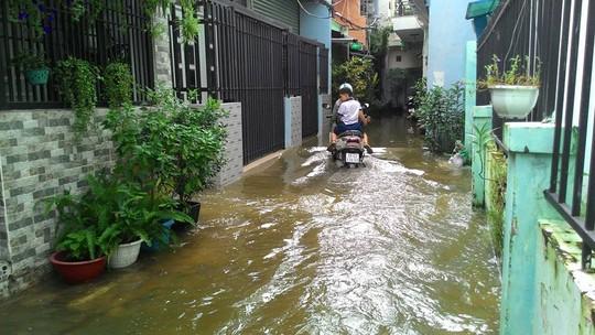 Nước từ kênh rạch ở quận 7 càng lúc càng chảy xiết