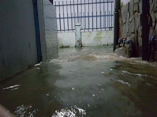 Dòng nước chảy khá xiết nên việc đưa trẻ em đi lánh nạn để tránh bị nước cuốn trôi là giải pháp an toàn
