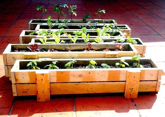 Khung gỗ mini dành cho sân có diện tích nhỏ.