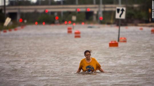 Cây đổ và lũ lụt ở bang Georgia. Ảnh: AP