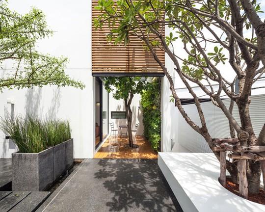 Khoảng sân vườn giữa 2 ngôi nhà được bố trí cây xanh một cách phù hợp,tạo nên không gian tự nhiên, thoáng đãng