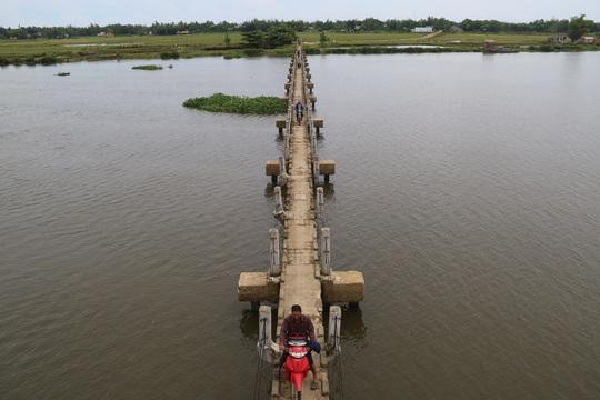 """Theo chính quyền địa phương, cây cầu """"vĩnh biệt"""" này dài gần 300 m, được xây vào năm 1985, nhằm đưa nước từ công trình đại thủy nông Phú Ninh về tưới tưới tiêu cho 30 ha lúa thuộc đồng bãi vẹt xã Tam Tiến."""
