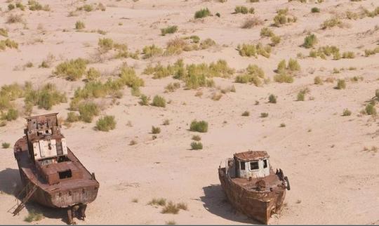 Những chiếc tàu cá kẹt lại thành dãy dài hàng chục km trên sa mạc Aralkum. Ảnh: BBC