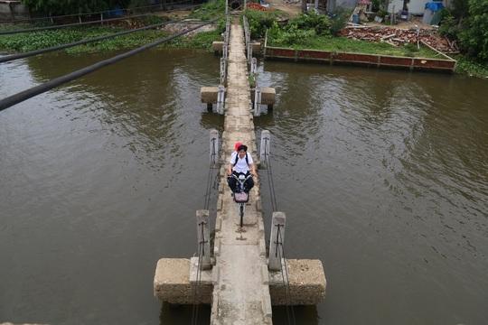 Theo lãnh đạo xã Tam Tiến, từ thôn Tiến Thành đi qua cây cầu này gần hơn 8 km so với đi vòng lên hướng Tam Kỳ nên nhiều người bất chấp cảnh báo. Mỗi ngày, có hàng trăm lượt người qua lại, trong đó có rất nhiều học sinh.