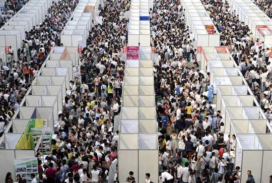 Hàng ngàn người tham gia hội chợ tìm việc làm ở Trùng Khánh. Ảnh: Daily Mail
