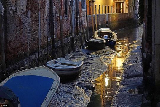 Mực nước thấp kỷ lục khiến các kênh đào tại TP Venice cạn trơ đáy. Ảnh: REUTERS, EPA