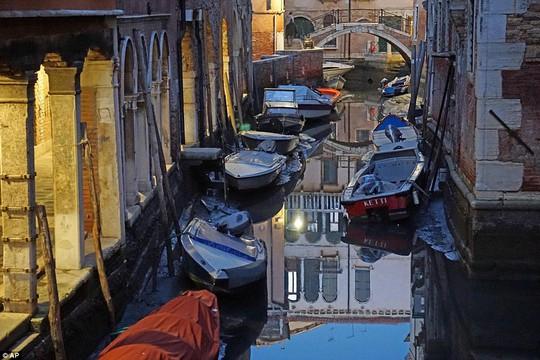 Venice khô khốc khác thường