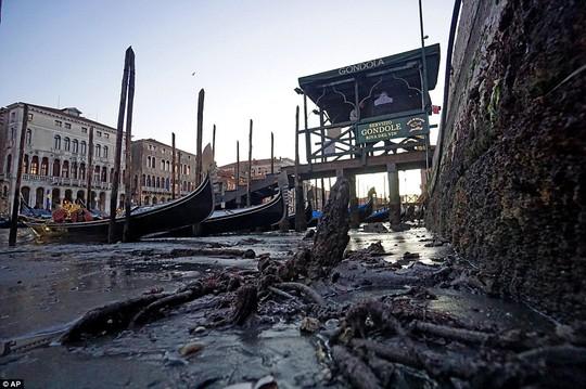 Những hình ảnh khác lạ về TP Venice. Ảnh: EPA, AP