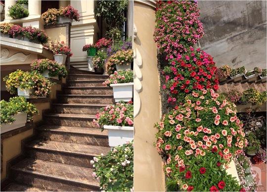 Những bậc thêm cũng được đặt những chậu hoa đẹp.